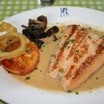 Salmon in Cream