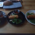 Excellent spring roll starters