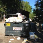 "See ""Lobby-Check In"" sign, behind this overflowing dumpster?  yes, that is where check-in"