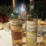 Limoncello and Grappa