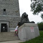 The Lions at the Tower