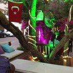 cafe vita ottoman area