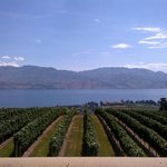 View of Okanagan Valley From Restaurant