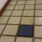Brennand's tiles