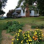 Alston house grounds