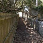 Secret walkway to beach