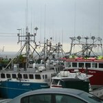 Harbor full of lobster/fishing boats.