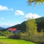 Scenic drive n. Alma - Hwy915