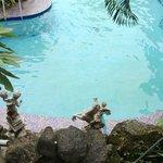 Hotel Swimiming Pool