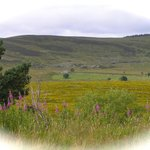 Highland Tourist Route from Nairn to Grantown-on-Spey