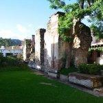 garden view Cirilo