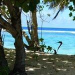 La bord de plage vue du chalet