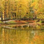 Shevchenko City Park
