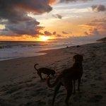 Sunset, Playa Santa Teresa