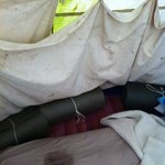 wet beds from leaking Tipi