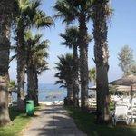 Walk way to Beach area