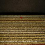 Candy under sofa