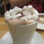 Superior hot chocolate for chocoholics everywhere!