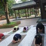 Golden summit was seen when we did yoga