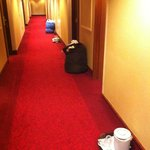 Dirty stuff left in the hallway for more than 10 hours!