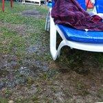 Liege beim Pool