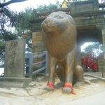 Shizi Peak (Lion's Peak)