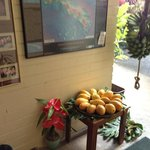 Lobby area: Fresh fruits by the bunch