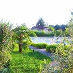 Vue du jardin et de la piscine accessible 24/24 !