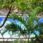 vue sur la piscine du 1er étage