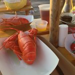 boothbay lobster wharf 3 for $26!