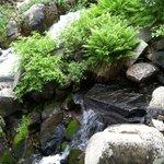 Skelton to Arrowhead Creek