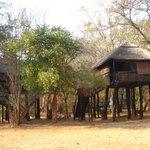 こんな小屋が10棟ほど建っています