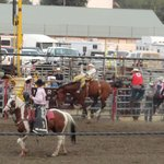Yellowstone Roundup Rodeo