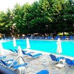 бассейн, вид с террасы столовой