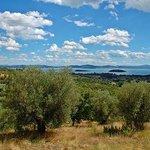 Il lago dal Galluzzo
