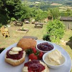 Palk Arms cream tea with a view