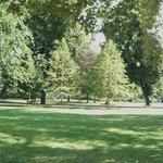 Peaceful little park