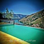 Pool Sunny Morning