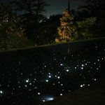 starry light pool