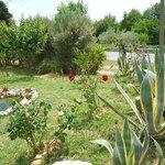 I nostri clienti potranno godere della vista di un giardino assai rigoglioso