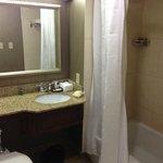 Suite Bathroom area.