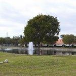 Resort Grounds/Lake View