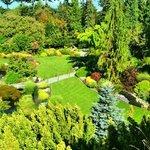 Garden at Queen Elizabeth Park