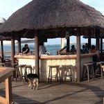 Bay side bar
