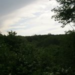 The view from one of the walking trails