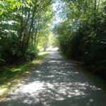 zoo path