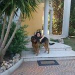 Io e Maya