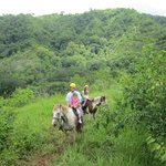 Ridding Horses in the mountains