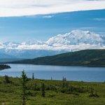 Denali in the morning beyond Wonder Lake