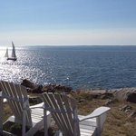 cozy adirondack chairs placed around the property for you to enjoy the view. we saw harbor seals